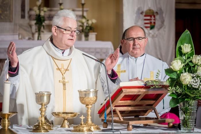 Elsőáldozásra készülők egyházmegyei lelki napja Székesfehérváron